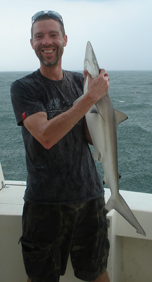 blacktip_shark